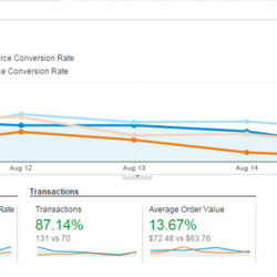 google analytics ecommerce overview report